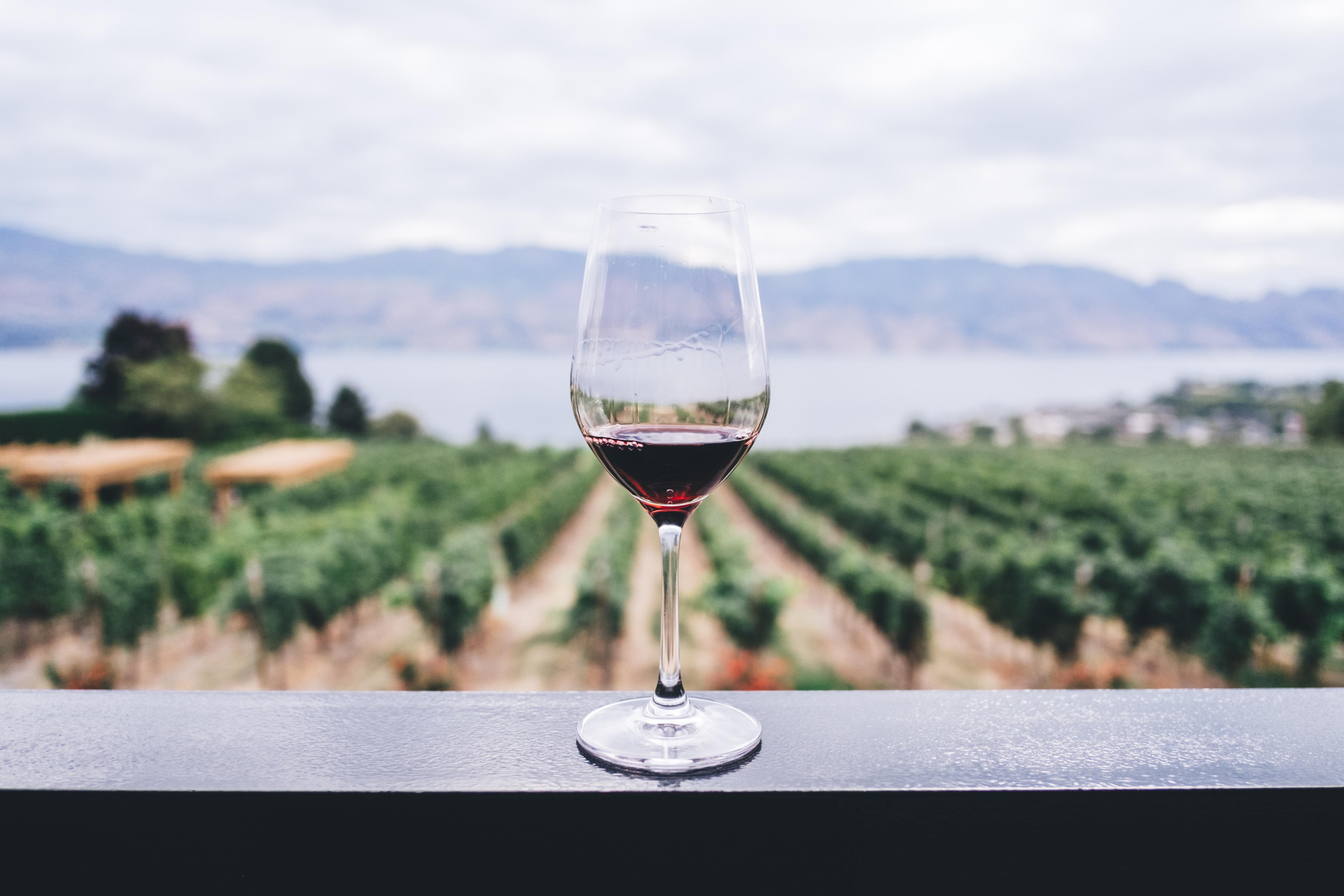 Heb je ook wel eens gehoord dat rode wijn gezond is? Nou dat zijn dus niet alle wijnen. Er maar een paar wijnen echt gezond en dat zijn deze
