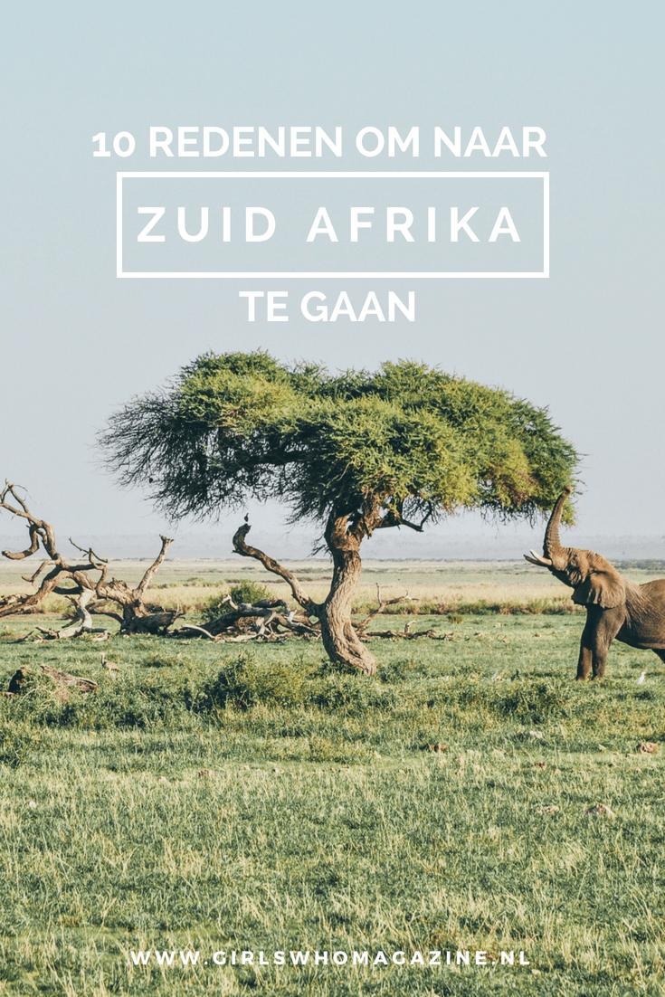 Zuid-Afrika 10 redenen om het land te bezoeken. Tips de reis van je leven vind je hier!