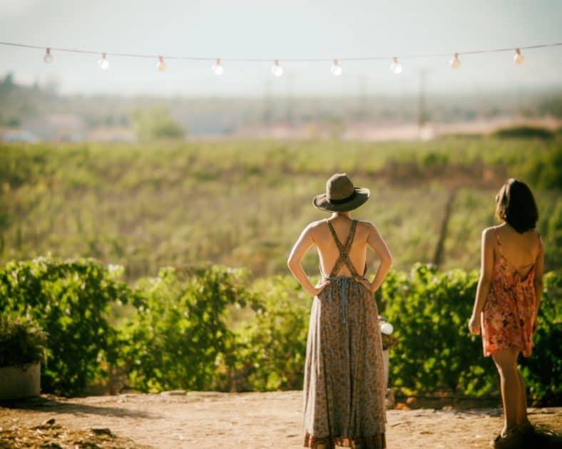 AIRBNB. guesthouse. wijn drinken. Wijngebieden. Wijnregio's. Goede wijn drinken is in Nederland al fijn, maar moet je nagaan hoe fijn dat ter plekke in de mooiste en beste wijngebieden ter wereld zal zijn! Wij vroegen Marcella (die as we speak in Europa aan het rondreizen is langs prachtige wijngebieden) wat haar favoriete gebieden zijn. Dat werd een heel mooi lijstje, met deze vijf parels als winnaars.De wegen, wijngaarden, dorpen en steden ruiken hier naar vers geplukte druiven. Als échte wijnliefhebber moet je deze wijngebieden & Airbnb's bezocht hebben!