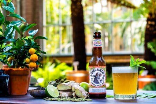 lowlander botanical bier - gemberbier - grapefruit bier - bier met munt