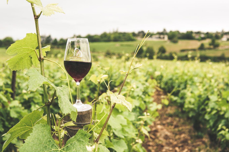 Wijnmarathon Bordeaux - Wijnmarathon Europa - Wijnmarathons 2021 - Wijnmarathon Du Medoc - - Medoc marathon 2021 - wijnruns in Europa - wijnrun 2021 - hardlopen en wijn drinken tegelijkertijd