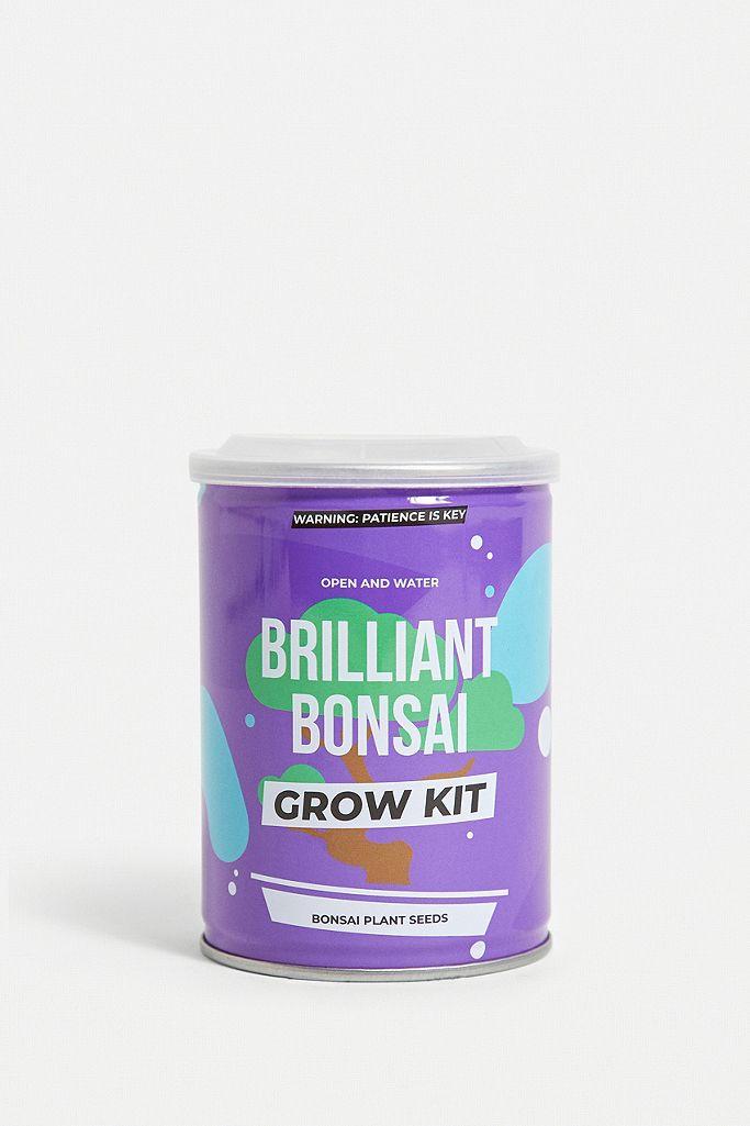grow kit - grown your own - plant uit blik - cactus - carnivore - bonsai