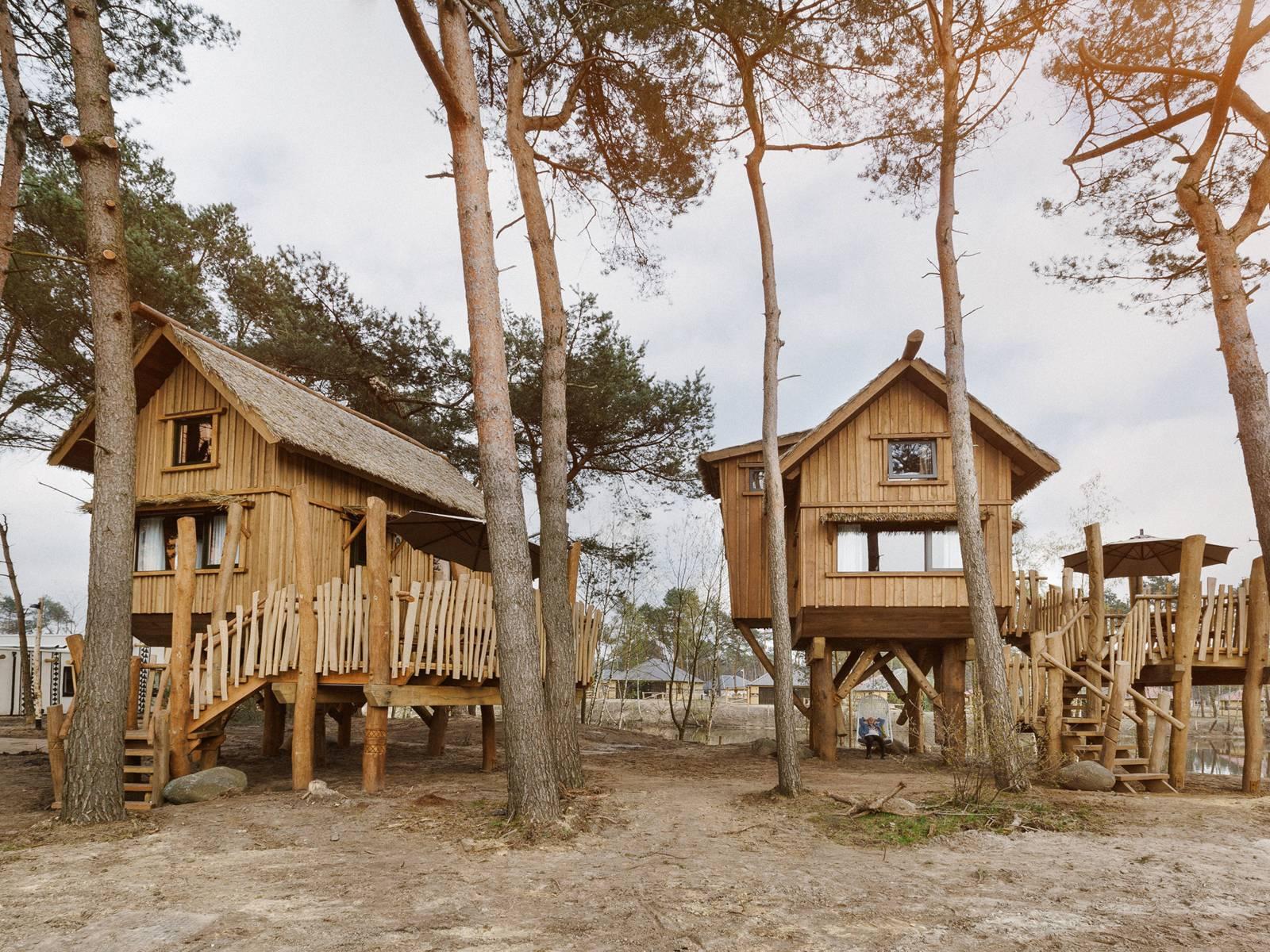 slapen in een boomhut - overnachten in een boomhut - bijzonder overnachten - overnachten in de natuur - boomhutten nederland - boomhut beekse bergen