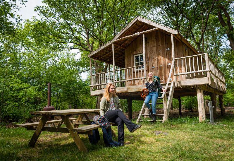 slapen in een boomhut - overnachten in een boomhut - bijzonder overnachten - overnachten in de natuur - boomhutten nederland - boomhut beekse bergen - boomhut in drenthe
