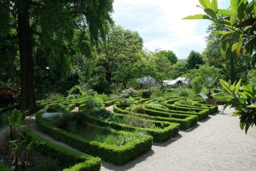 botanische tuinen - botanische tuin - tropische tuinen - tropische tuin - tuinen - botanicus - wat is een botanische tuin