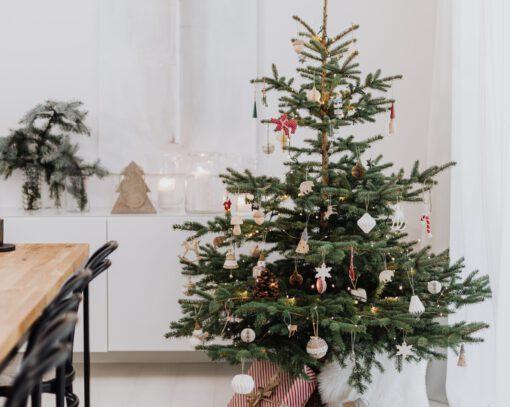 duurzame kerstboom tips - duurzame kerstboom - duurzame kerst - duurzaam kerstboom kopen - duurzamere kerstboom - kerstboom adopteren - diy kerstboom