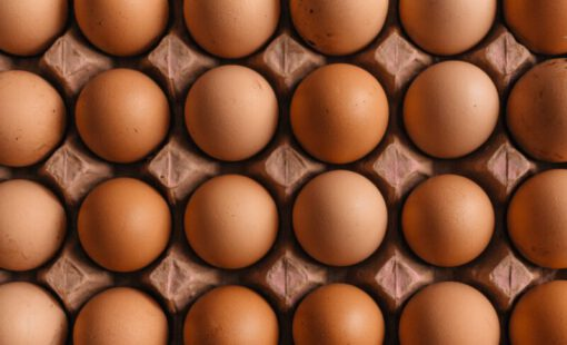 proteine - proteïnerijk - proteïnerijk voedsel - eiwit - eiwitten - meer proteïne dan ei - producten met veel eiwitten