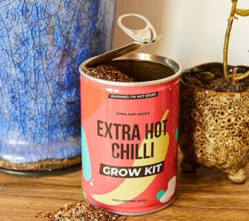 grow kit - grown your own - plant uit blik - cactus - carnivore - bonsai