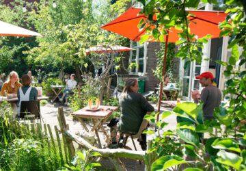 groene tuinen amsterdam - groene terrassen amsterdam - groene terras tuinen amsterdam - terras tuinen amsterdam - terras amsterdam - terrassen amsterdam - hotspots amsterdam - tuin amsterdam