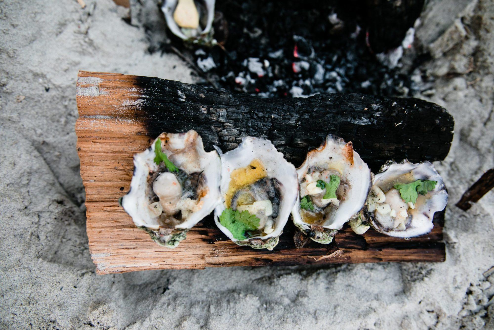 oesters rapen - oesters rapen nederland - oesters rapen in nederland - oesters in nederland - oesters zelf rapen nederland - oesters rapen tips - oesters rapen hoe - waar oesters rapen - wanneer oesters rapen