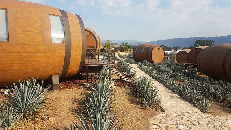 overnachten in tequilavat - overnachten in tequilvaten - overnachten tequilavat - bijzonder overnachten - bijzondere hotels - hotel mexico - overnachten mexico - tequila mexico