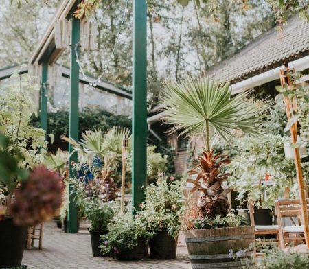 restaurants met tuin amsterdam - restaurant met tuin amsterdam - restaurants met binnentuin amsterdam - tuin amsterdam - binnentuinen amsterdam