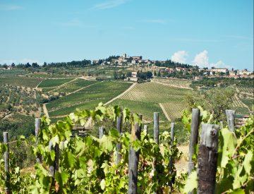 wijnreis winnen - winactie hema - vakantie winnen - give away hema