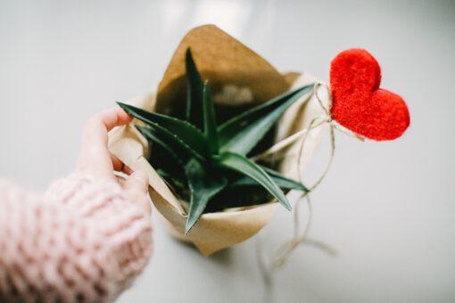 valentijnsdag cadeau - valentijn cadeau - valentijnsdag cadeaus - cadeau voor valentijnsdag - cadeau 14 februari - romantische cadeaus