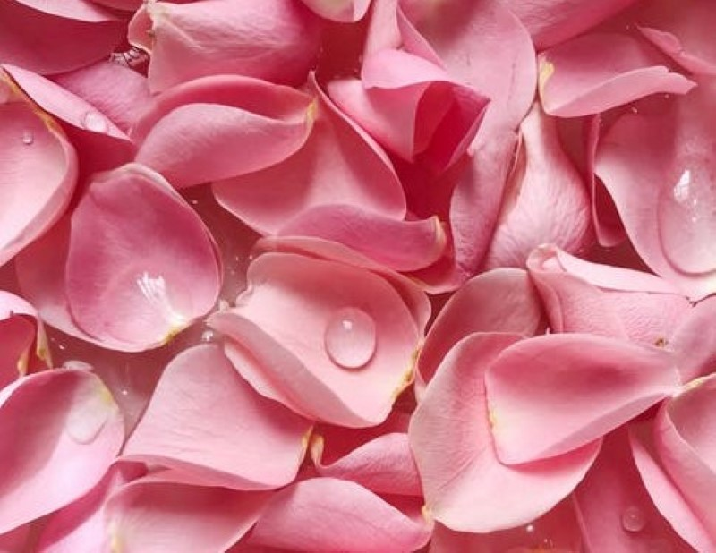 voordelen rozenwater - rozenwater drinken - rozenwater puur - rozenwater gezicht - rozenwater tips