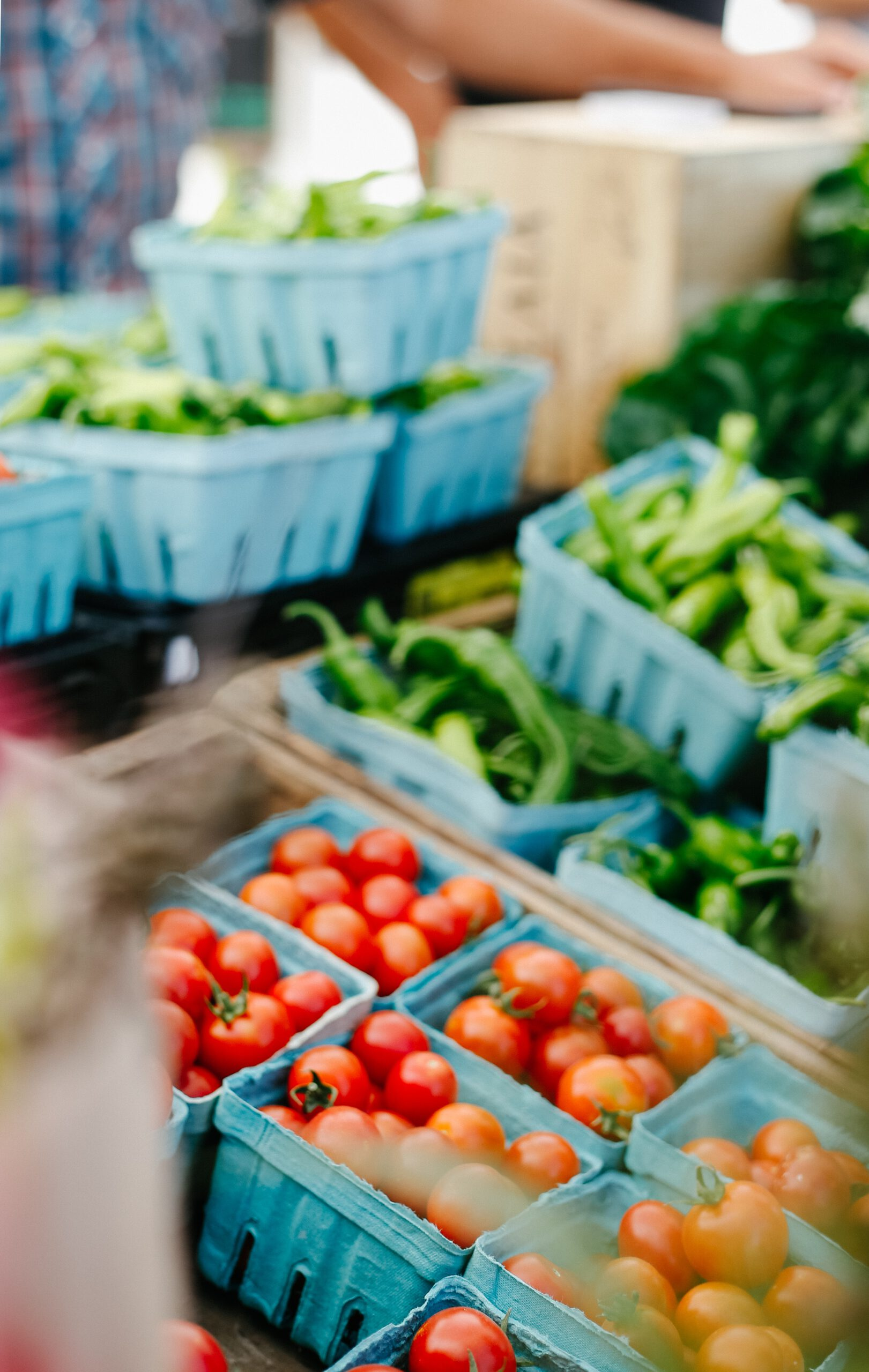 wat te doen in rotterdam - rotterdamse markt - hotspots rotterdam - activiteiten in rotterdam